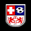 Tomás Greig FC